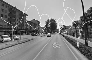 platani-viale-trieste-abbattimento-02-2019